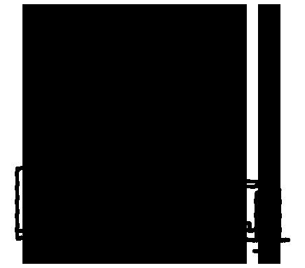 Toronto Icon